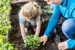 Montessori Maven Gardening